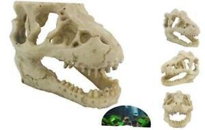 TinaWood Small Resin Emulational Dinosaur Skull Fish Tank ...