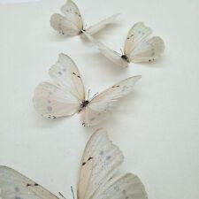 4  Ivory- Cream Sparkling 3D Butterflies Bedroom Wedding Home Decor Butterfly