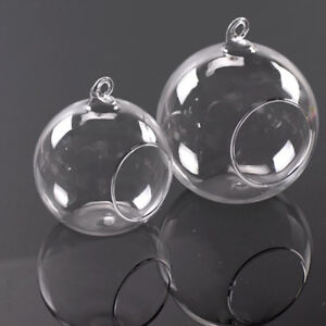 F9c6 Clear Glass Round Hanging Vase Plant Candle Flower Terrarium