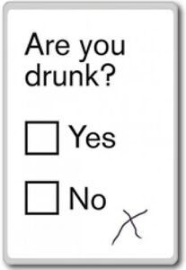 Are You Drunk Yes No Motivational Quotes Fridge Magnet Ebay