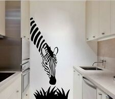 Zebra África murales wallpaper joyas de pared 77 x 33 cm imagen de muro