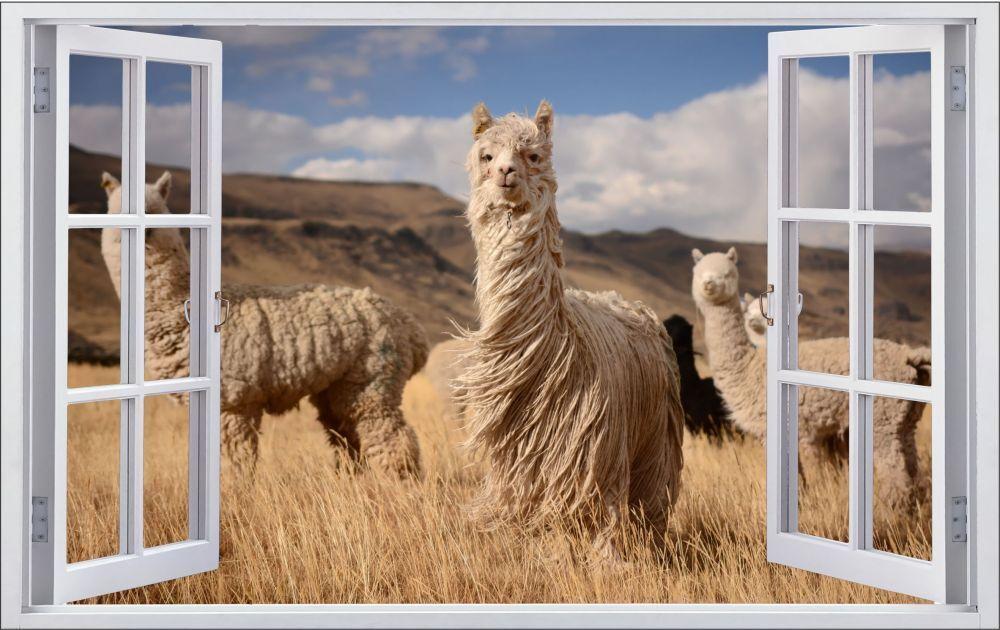 Lama Herde Südamerika Tier Wandtattoo Wandsticker Wandaufkleber F0151