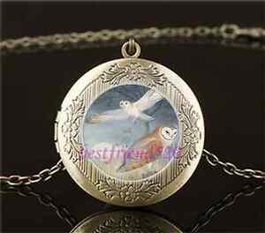 Vintage-Owl-Photo-Cabochon-Glass-Brass-Chain-Locket-Pendant-Necklace