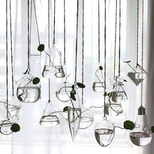 Creative-Hanging-Glass-Flower-Planter-Vase-Terrarium-Container-Garden-Home-Decor