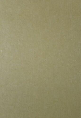 Wallpaper Pale Green Italian Vinyl  Quality Textured 70079