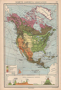 1942 MAP ~ NORTH AMERICA VEGETATION ~ CANADA UNITED STATES LAND ...