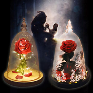 Wr Light Up Eternal Rose Preserved Flower Glass Dome Beauty And The Beast Gifts Ebay