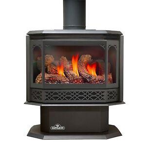 Napoleon Gas Fireplace GDS50 Stove LP NG Propane Natural W