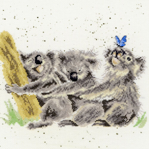 BOTHY THREADS THREE OF A KIND KOALAS HANNAH DALE COUNTED CROSS STITCH KIT XHD20