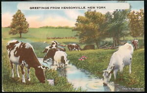 HENSONVILLE-NY-Vtg-Greetings-Postcards-Cows-Bull-Stream