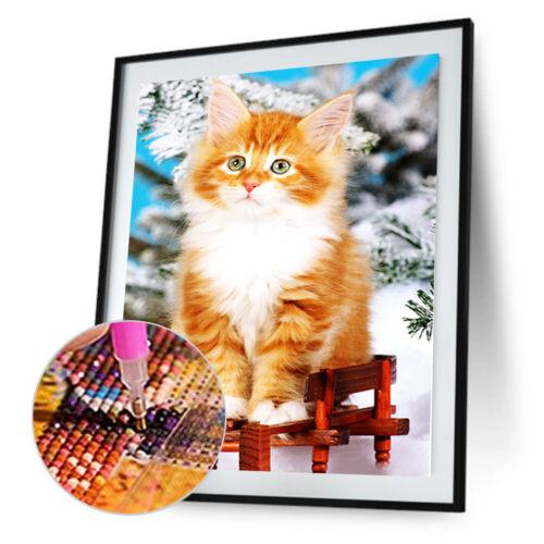 5D Diamond Painting Diamant DIY Kreuzstich Stickerei Malerei Bilder Stickpackung