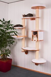 wandkratzbaum kratzbaum katzen kletterbaum f r die wand ebay. Black Bedroom Furniture Sets. Home Design Ideas