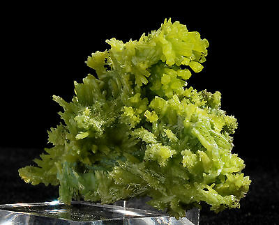 "2.2"" Bright  Lemon  Green  Pyromorphite Mineral Display Specimen!"