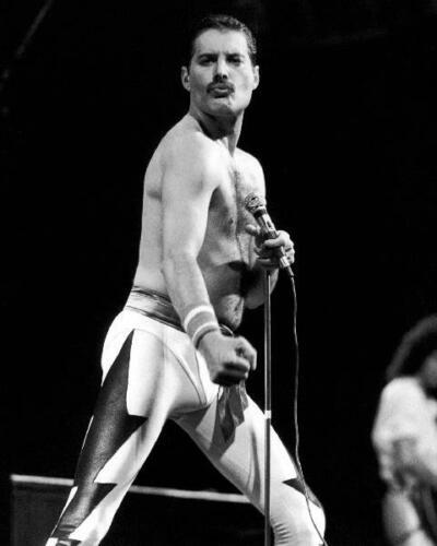Freddie Mercury Queen 8x10 Photo FM-24
