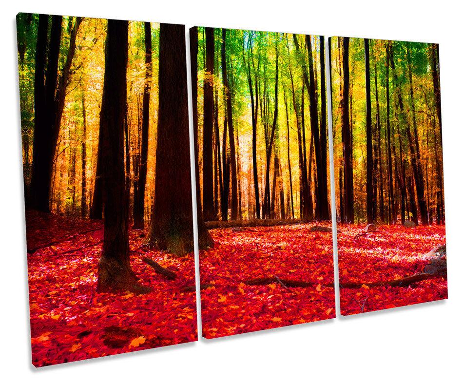 Forest Modern Modern Modern Landscape Floral TREBLE CANVAS WALL ART Box Framed Print 8d4dd7