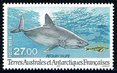 Search For Flights Fsat Taaf 242 Mnh Mole Shark 1998