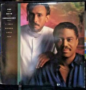 THE MAIN INGREDIENT I Just Wanna Love You Album Released 1989  Vinyl Collection