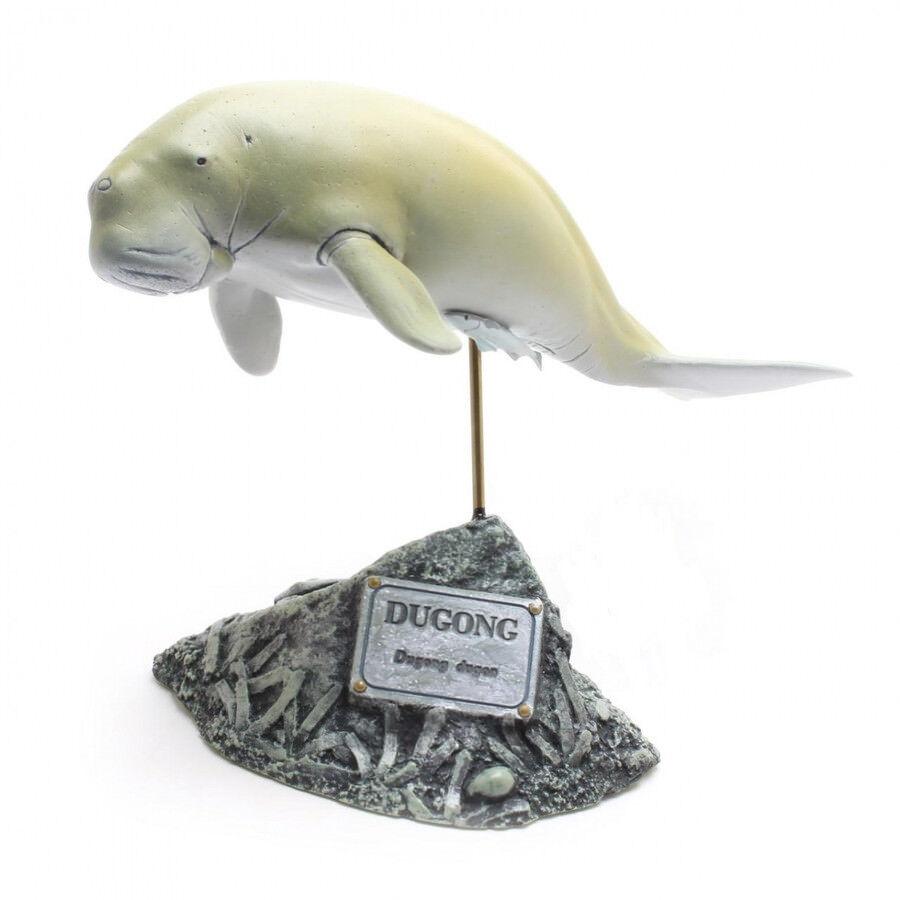 Kaiyoukoubou Dugong Vero Figura Pesce Lavori di Intaglio Fatto a Mano Nuovo Da