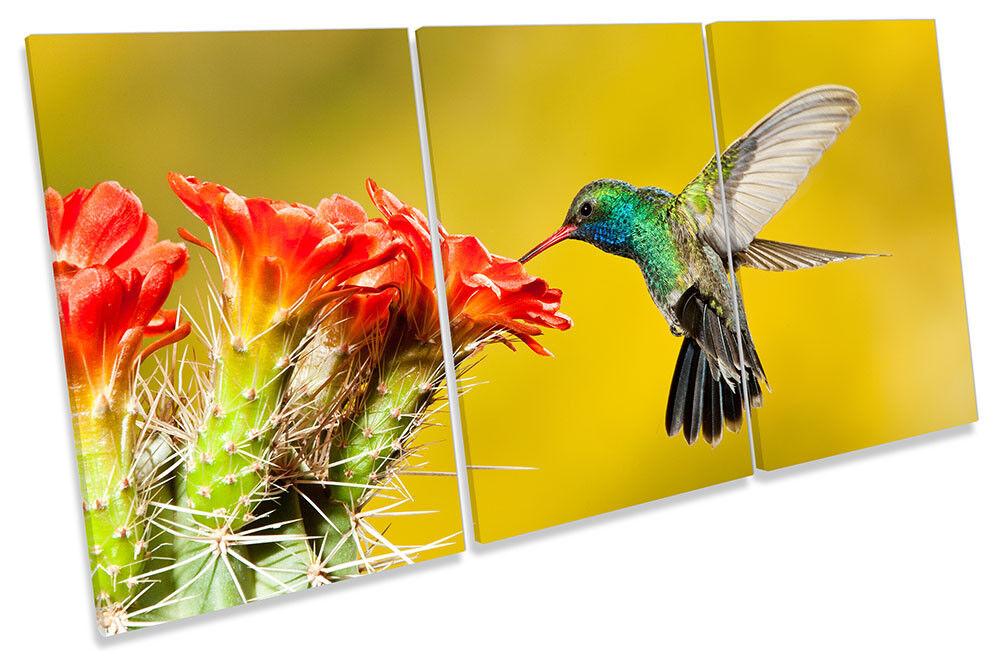 Humming Bird Flower Picture CANVAS WALL ART TREBLE Print