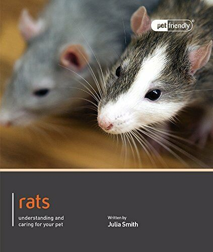 1 of 1 - Rats - Pet Friendly by Julia Smith 1907337091 The Cheap Fast Free Post