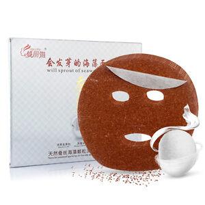 10Pcs-Natural-ALGAE-SEAWEED-Silk-Mask-Ultra-Hydrating-Essence-Face-Mask-Sheet
