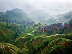 PHOTO-LANDSCAPE-RURAL-CHINESE-PADDY-TERRACES-FARMING-ART-PRINT-POSTER-MP3625B