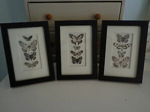 034-BUTTERFLY-COLLECTION-034-An-unusual-stylish-framed-picture-of-paper-Butterflies