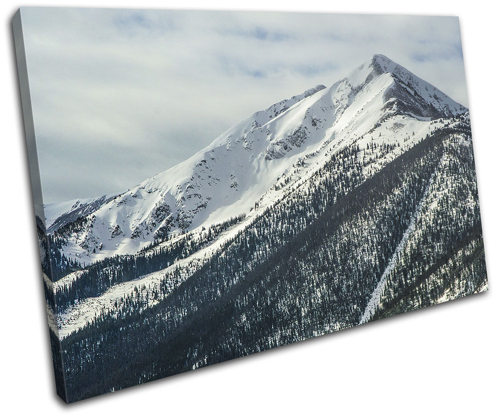 Mountain Forest Winter Landscapes SINGLE TOILE murale ART Photo Print