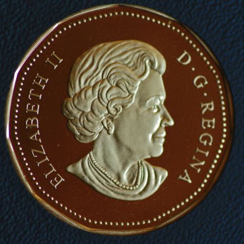 2005 Canada Classic design Loonie from double dollar set proof finish