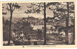 63-cpa-CHATEL-GUYON-Vue-a-travers-les-pins-2631
