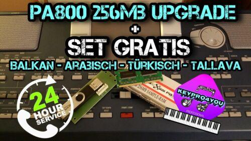 Korg pa800 256mb ram upgrade Speichererweiterung  expansion memory gratis set