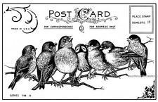 7 Cheeky Songbirds Birds Postcard Crafty Individuals Unmounted Rubber Stamp