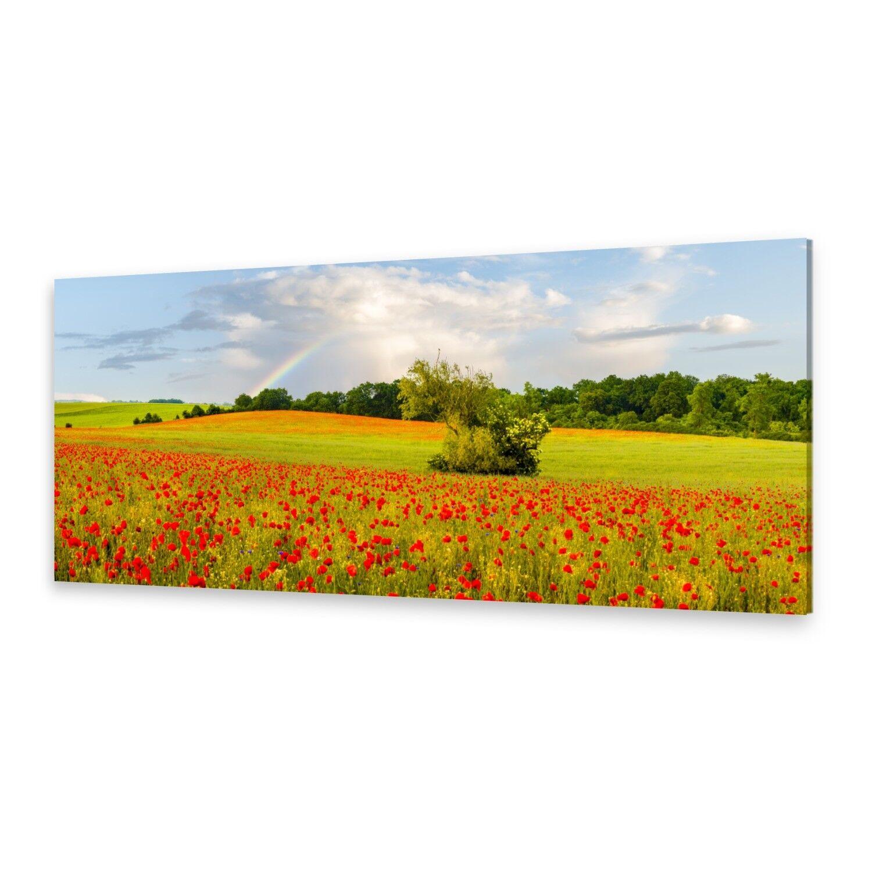 - Tela Immagini Immagine Parete Stampa su Tela Arte Stampa Arcobaleno Papavero