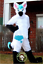 Hot Unisex Long Fur White Husky Mascot Costume Fox Dog Suit Professional Parade