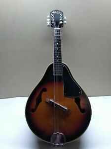 HONDO-HMD-6-Mandolin-8-String-missing-last-string-039-s-tuner-at-top