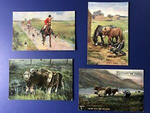 4-TUCK-Animals-Antique-Postcards-1900s-For-Collectors-Horses-Cattle-Sheep
