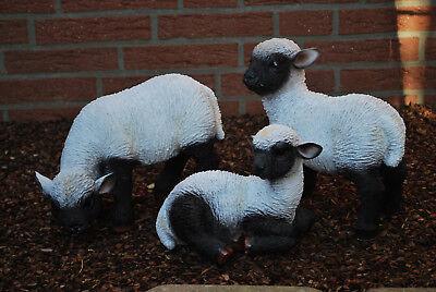 Lamm Schaf Lämmchen Osterlamm Gartenfigur Ostern Tierfigur Figur Einfach Zu Schmieren