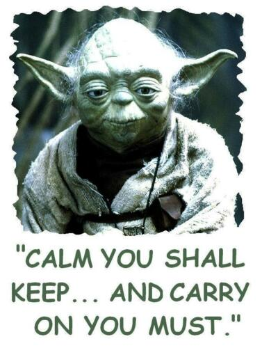 Yoda # 10-8 x 10 Tee Shirt Iron On Transfer Calm Keep