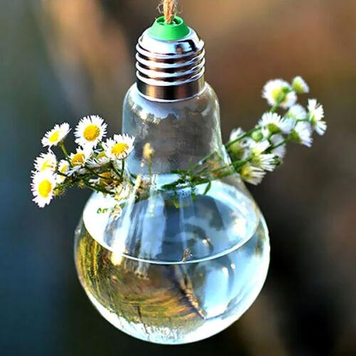 Bulb Shape Hanging Flower Hydroponic Plants Glass Vase Container Pot Home Decor