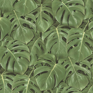 Tropical Jungle Leaves Palm Tree Wallpaper Paste The Wall Vinyl