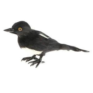Realistic-Magpie-Statue-Simulation-Animal-Model-Kids-Educational-Toy-Gift