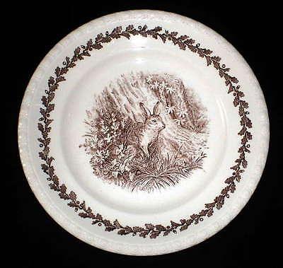 Villeroy & Boch V & B  Diana braun Suppenteller 23,5 cm  Hase
