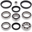 Differential Bearing And Seal Kit~2010 Arctic Cat 700 EFI H1 4x4 Auto Mud Pro