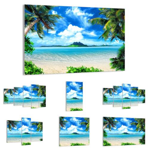 GLASBILD Wandbild Deko Strand Urlaub Insel Palme 2528 DE
