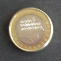 1 Euro-Münze Niederlande Prägejahr 1999 aus Umlauf Sammlerstück