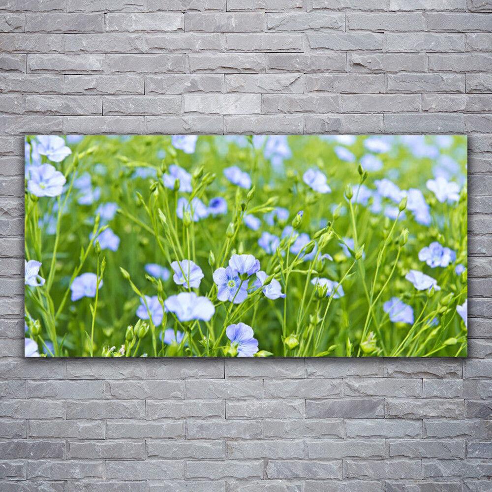Photo sur toile Tableau Image Impression 120x60 Nature Fleurs Herbe