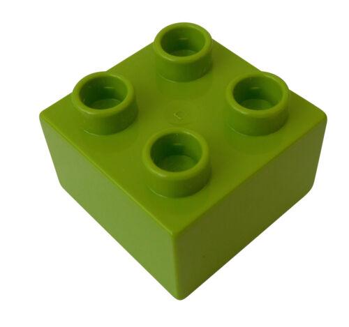 Lego Duplo 50 Stück limette Steine 2x2 lime 4 Noppen Stein Bausteine Neu