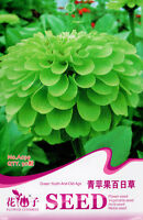 1 Pack 50 Green Zinnia Seeds youth-and-old-age Zinnia elegans Garden Flower A039