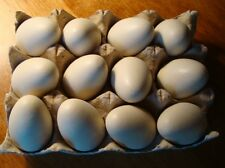 Set of 1 Dozen Country Primitive Brown Wood Chicken Eggs Farm Kitchen Home Decor