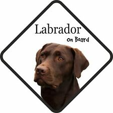Chocolate Brown Labrador Lab On Board Car Sign With Sucker Dog Stickers